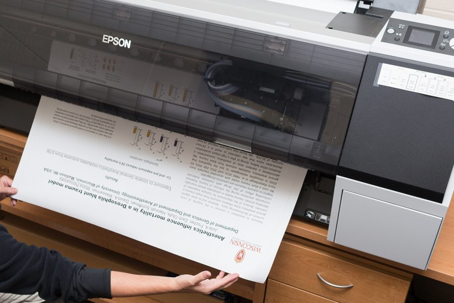 large format print being printed by large format Epson printer